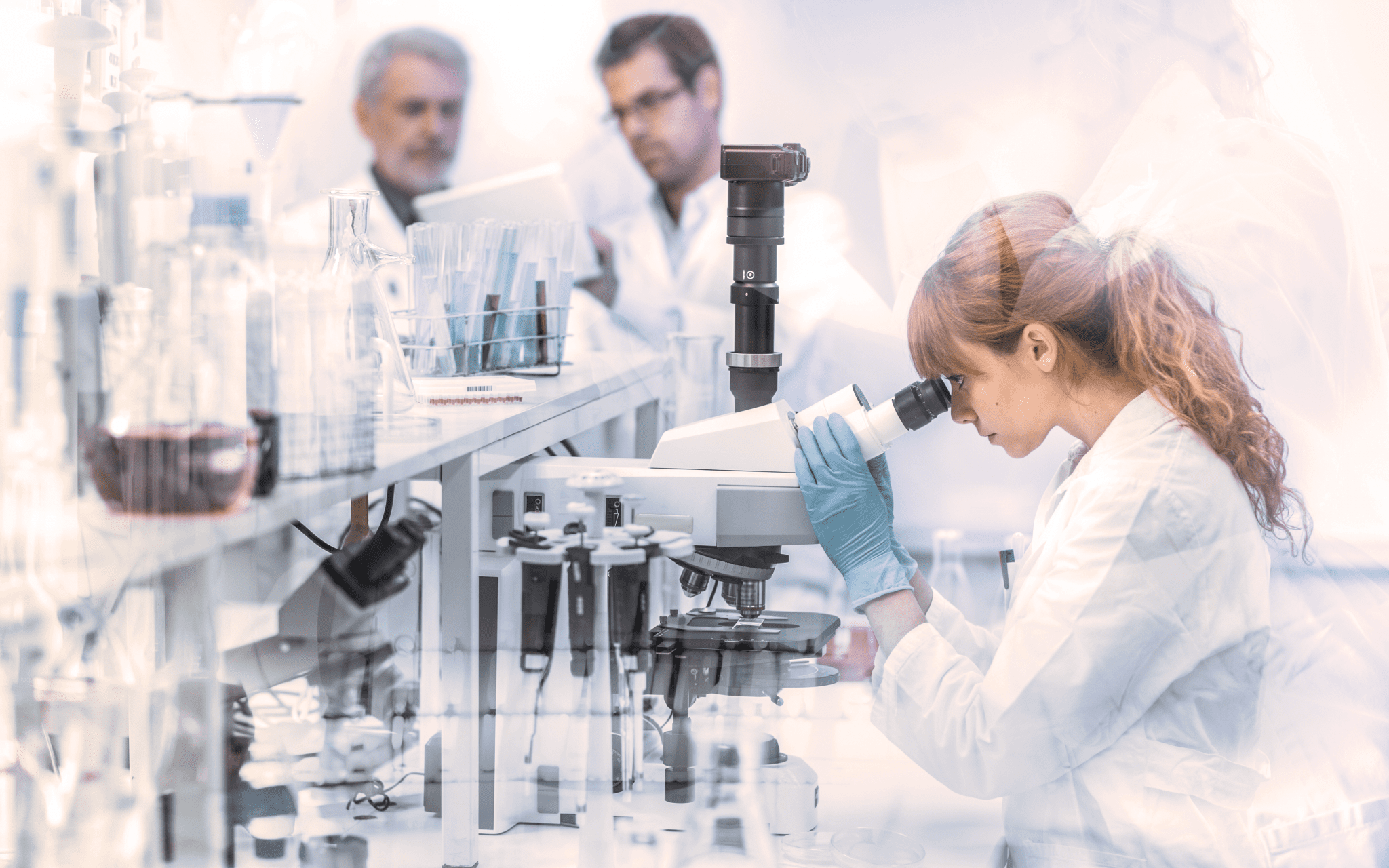 Mesothelioma researchers analyzing cell types in a lab.