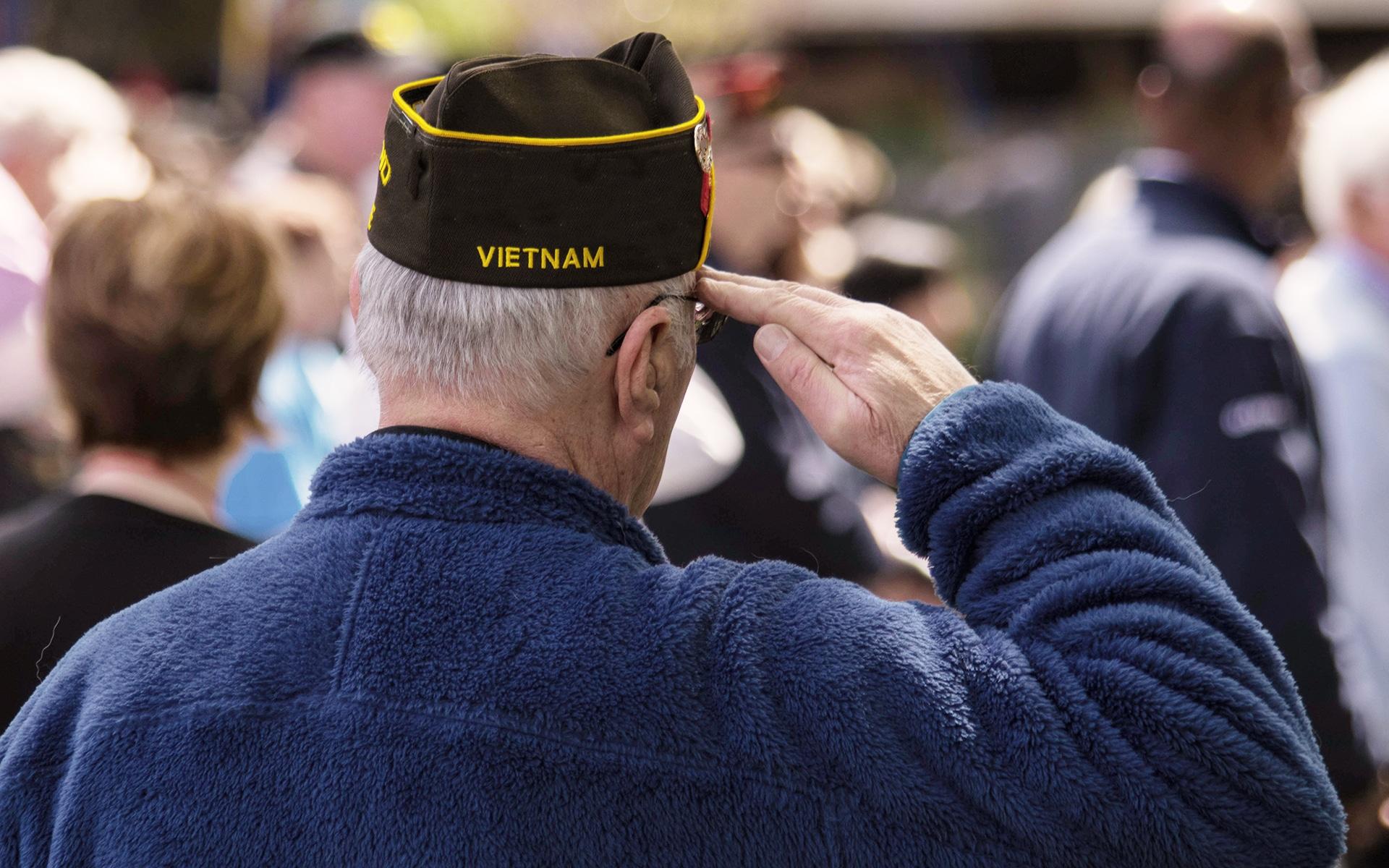 A back view of an elderly Vietnam Veteran saluting in a crowd.